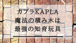 kapla,wood